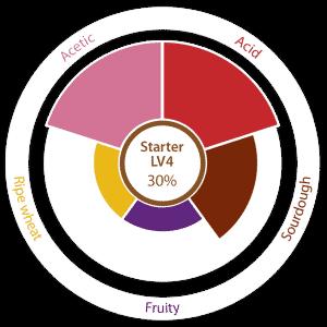 LV4-2015V2-LIVENDOCard-100x210-ENG-2